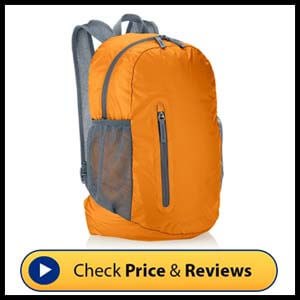 AmazonBasicsUltralight Portable Packable Day Pack
