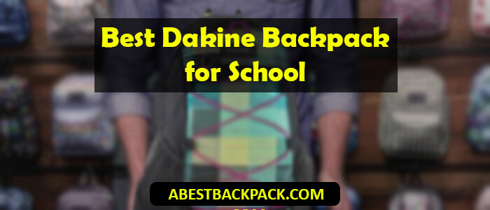 Best Dakine Backpack for School
